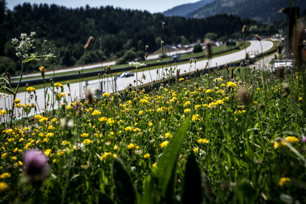 F1, Red Bull Ring, puzzle, v